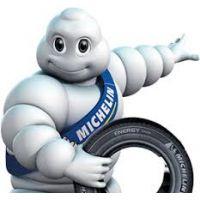 Конструкторы Michelin разработали шину со структурой коралла
